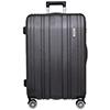 Luggage100